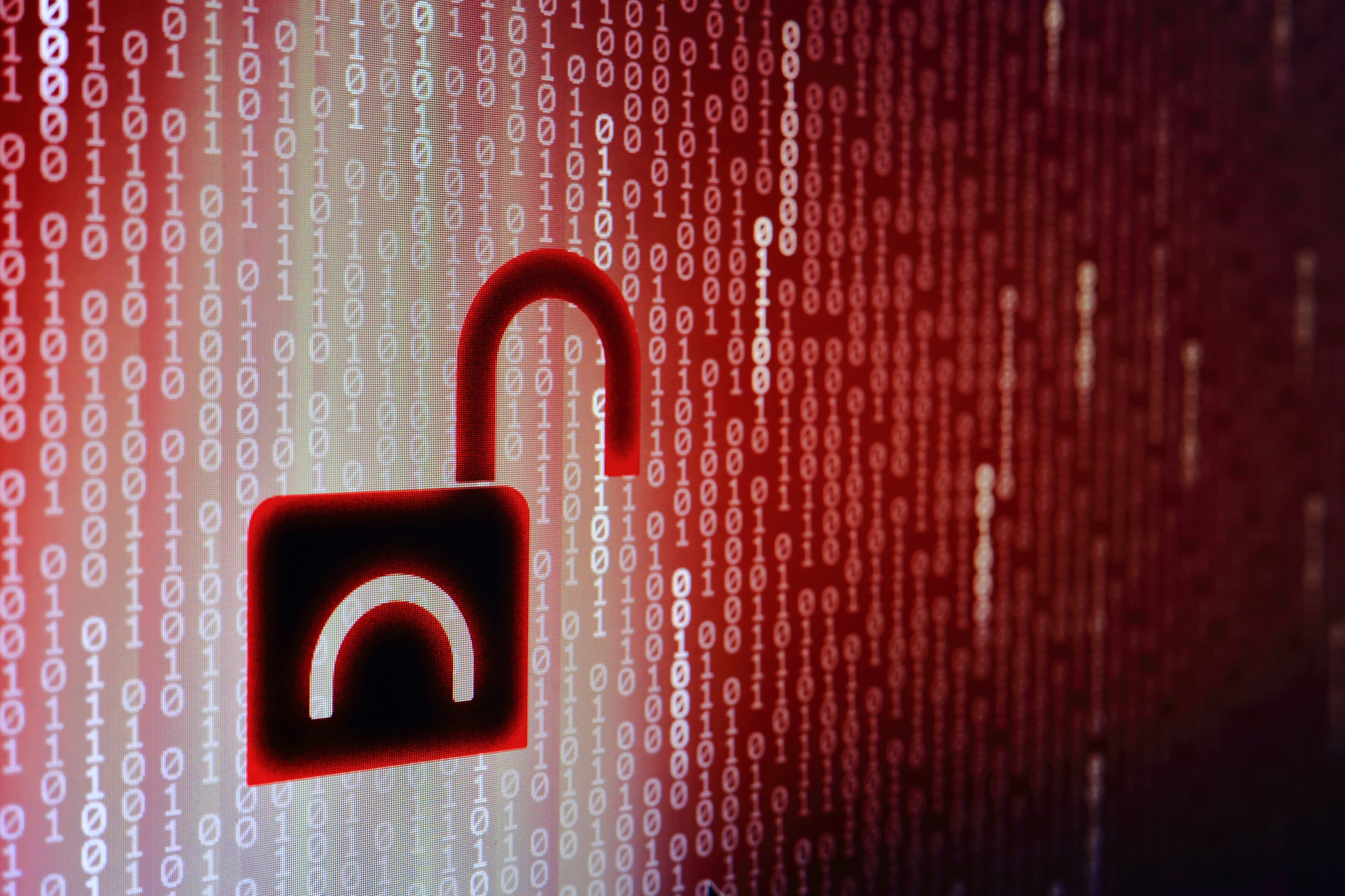 What to Do After Your Company Has Had a Data Breach